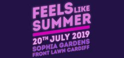 Gigantic Tickets - Feels Like Summer Music Festival 2019. 50% NHS discount