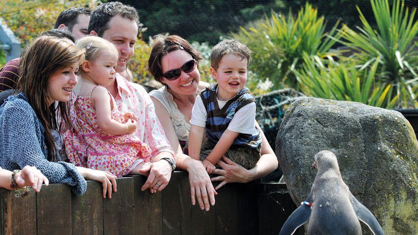 SEA LIFE Weymouth - Huge savings for NHS