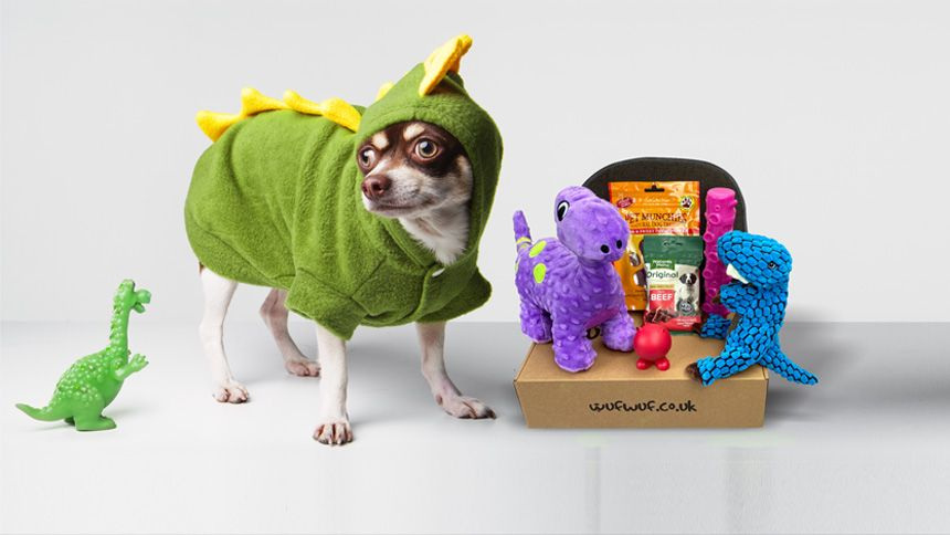 Monthly Joy Box for Your Dog - Save 25% on your first box