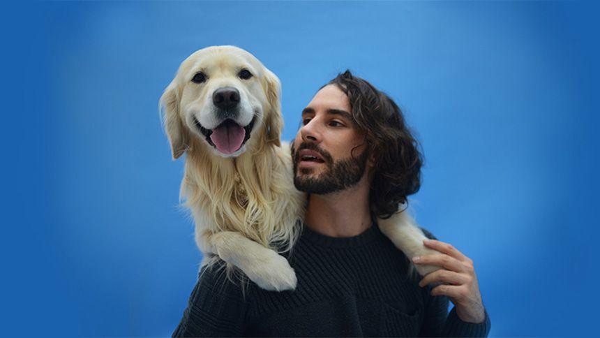Waggel Pet Insurance - 1st month free
