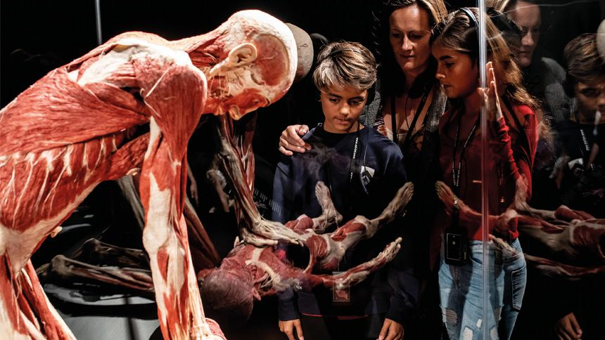 BODY WORLDS London Exhibition. Up to 25% NHS discount off entry prices